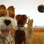 Best Muzzle - Choosing The Best Pet Muzzle is Very Important!