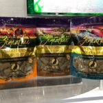 How Do You Find the Healthiest Dog Food for Your Pet