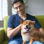 How To Develop A Good Relationship With Your Dog